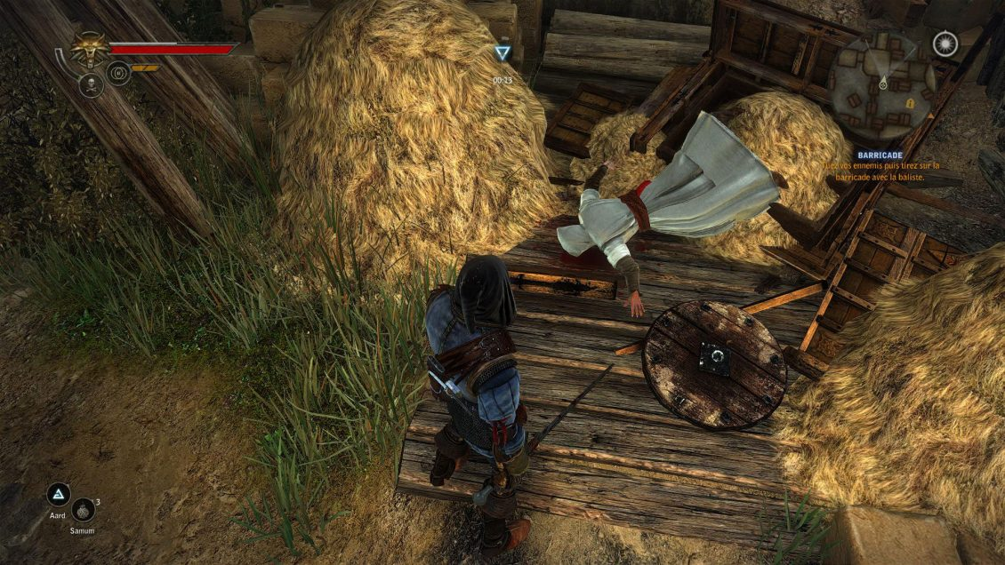 The Witcher Dead Assassin